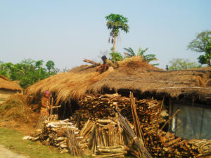 Tharu village at Chitwan